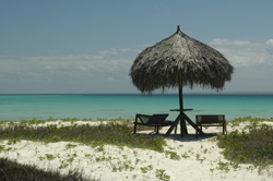reviews of Mozambique Hotels
